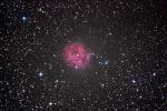 IC5146-L2-lrgb