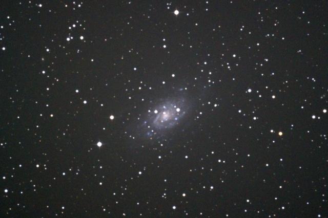 NGC2403-1502