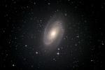 M81-1501