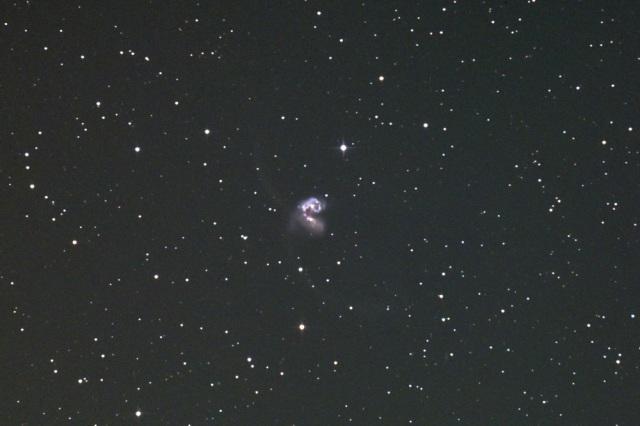 NGC4038-1503