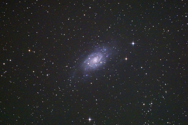 NGC2403-1503
