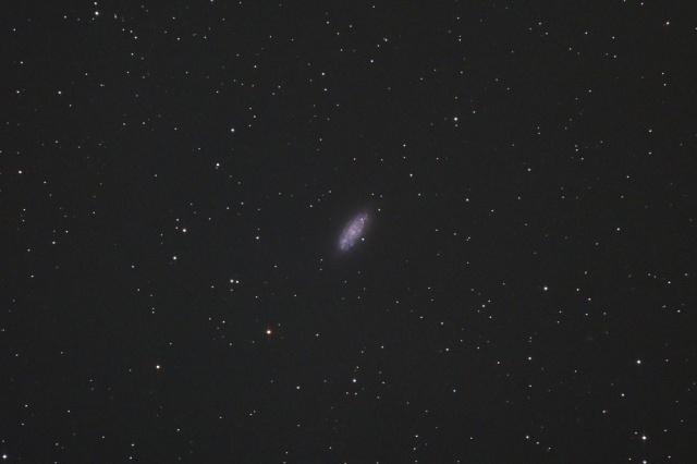 NGC2976-1503