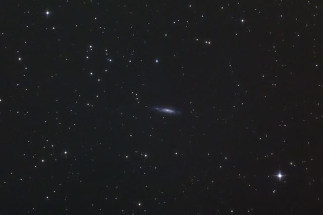 NGC3003-1503