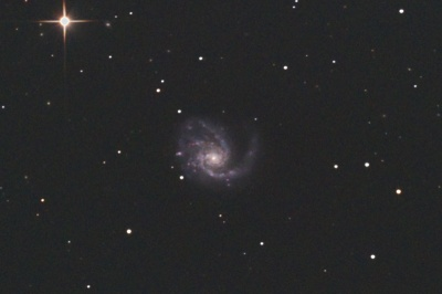 M99-1505center