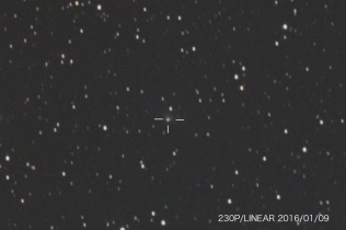 リニア彗星 (230P)、近日点通過後も増光しているようです。14.8等(測定値)