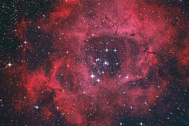 NGC2237-1601