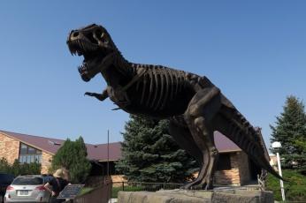 観測地の下見を終えて、キャスパー大学地質博物館へ
