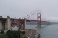 午前中は霧に包まれて寒いです