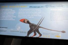 新発見翼竜の想像図、創造しすぎじゃね?